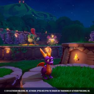 Spyro environment - Activision2